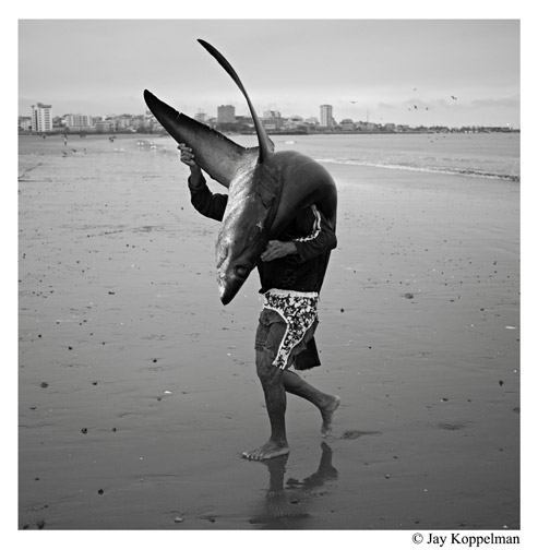 A fisherman and a shark caught off the coast of Puerto Lopez, Ecuador.