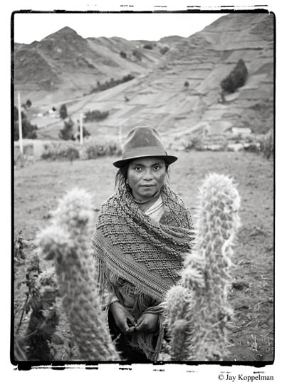 Native indigenous Quechua girl and cactus in Zumbahua, Ecuador.