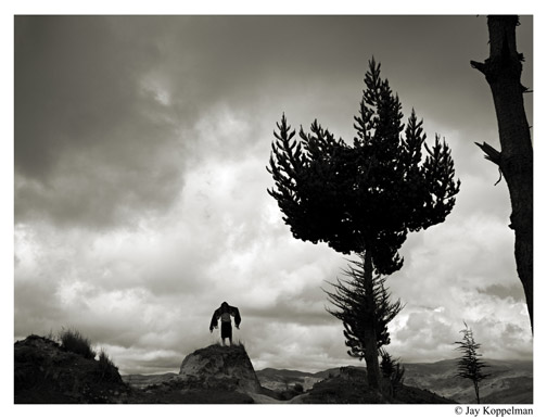 Landscape photo of indigenous woman and tree in Quilotoa, Ecuador.